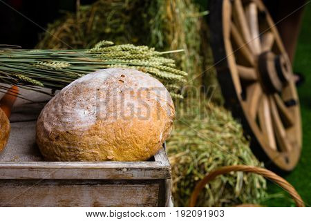 Farmer's concept. Freshly baked bread and ears of wheat lie on a wooden box near a hay stack and wheel carts