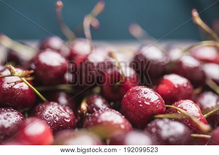Bright ripe sweet cherry covered with water droplets close-up