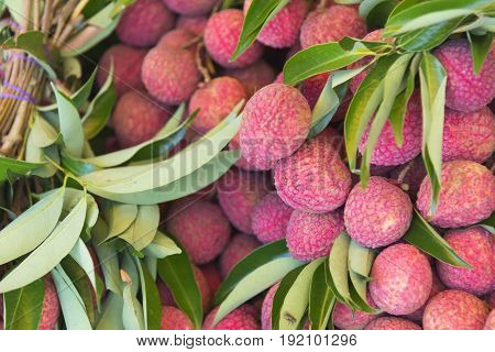 The lychees fruit in the tray.Thai fruit