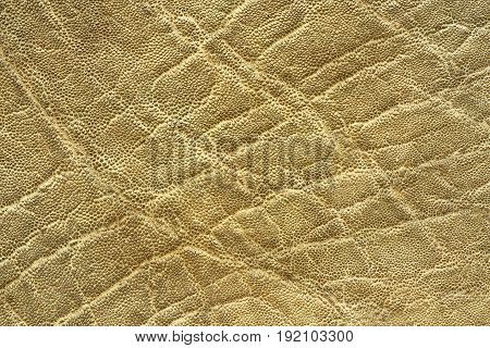 interesting textured elephant skin pattern of real leather for your design