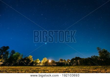 Green Trees Woods In Park Under Night Starry Sky. Night Landscape With Natural Real Glowing Stars Over Forest, Meadow At Summer Season. View From Eastern Europe At Spring Season.