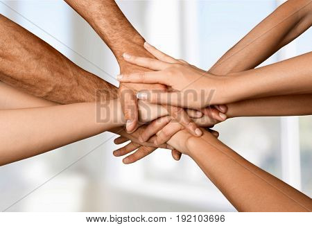 Holding family hands together family tree color group