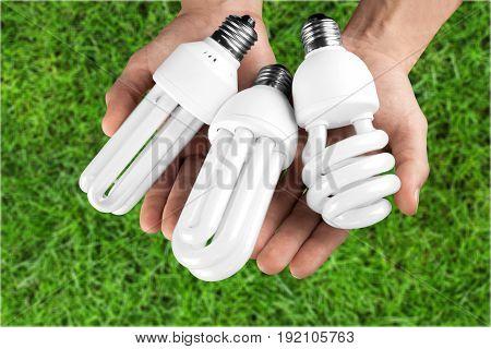 Light hands eco bulbs white background design