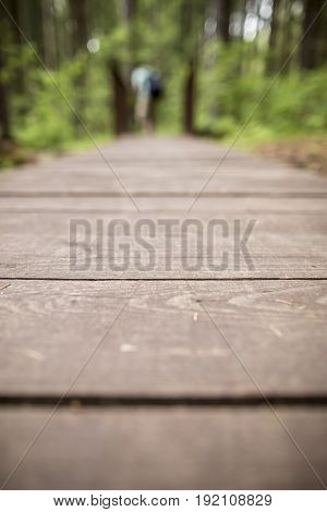Ecological path of wooden planks to walk in the woods in the background a blurred background of a man standing on the bridge during the summer warm day.