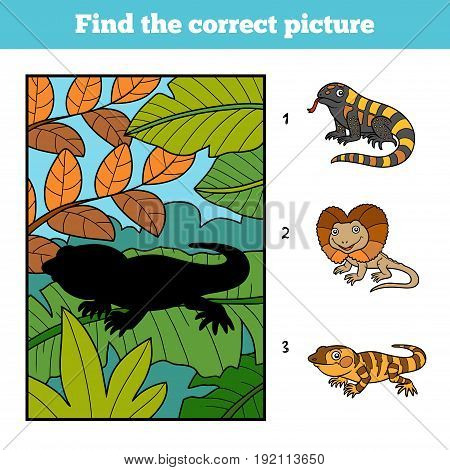 Find the correct picture, education game for children. Xenosaurus and background