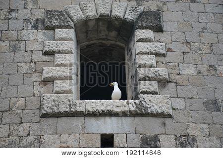 Windows In The Stone Walls Of The Fortress Mamula. Montenegro, Boka-kotor Bay.