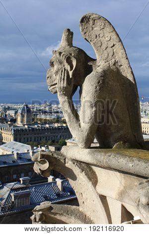 Gargoyle on  Notre Dame de Paris in France