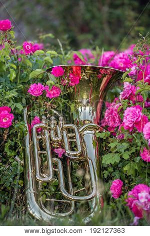 Horn in grass surrounded by flowers after a gig poster