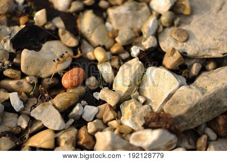 a smooth, round, red stone in the midst of rough rocks