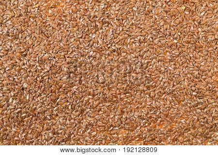 Frame filling raw unprocessed linseed or flax seed background texture