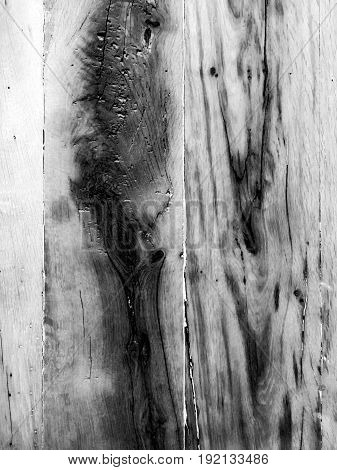Fragment Of Bark Wood Texture. Background Old Panels. Grunge Retro Vintage Wooden Surface, Vertical