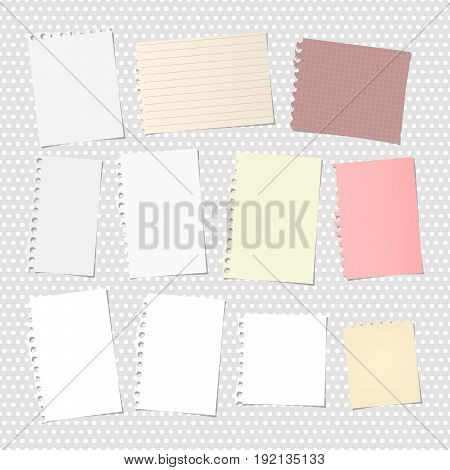 White and colorful ripped notebook, copybook sheets stuck on grey dotted pattern