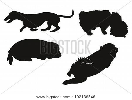 Set of silhouettes of dogs. Puppies in different poses. Vector illustration