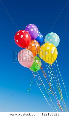 Balloons decoration colored on a blue background