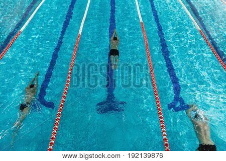 Top view of three male swimmers pushing off from the edge of a swimming pool