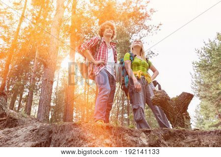 Low angle view of hiking couple standing on cliff in forest