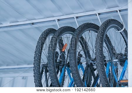 Bicycles hanging on rack under ceiling