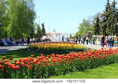 Chernihiv / Ukraine. 06 May 2017: people walk in the city park with flower beds of tulips and fountains. 06 May 2017 in Chernihiv / Ukraine.