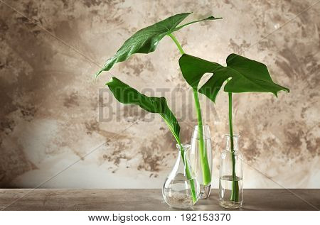 Vases with green tropical leaves on table against color background