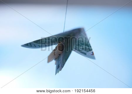 dollar banknote paper airplane