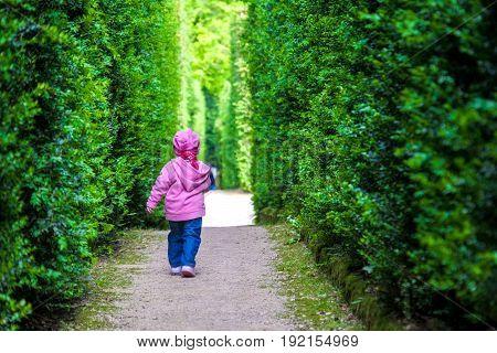baby girl left alone newborn walking child alone among the hedges