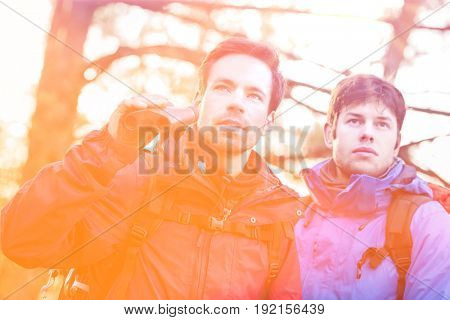 Male hikers with binoculars in forest