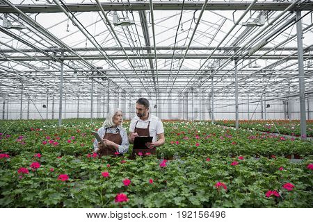 Picture of young serious man standing in greenhouse near mature woman and plants holding clipboard and tablet computer. Looking aside.