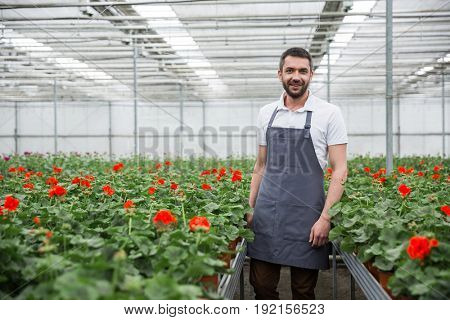 Photo of cheerful young man standing in greenhouse near plants. Looking camera.
