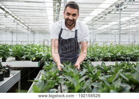 Image of handsome smiling young bearded man standing in greenhouse near plants. Looking camera.
