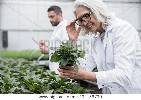 Picture of smiling young man and mature woman standing in greenhouse near plants holding clipboard. Looking aside.