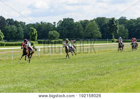 WROCLAW, POLAND - JUNE 18: Finish the race for the 3-year-old Arabian horses group II on 18 June 2017 in Wroclaw, Poland. This is an annual race on the track Partynice open to the public.