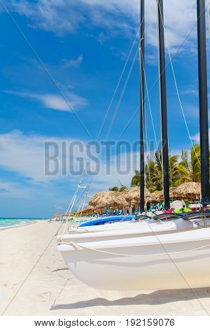 Sailboats and coconut trees at the tropical beach of Varadero in Cuba on a summer day