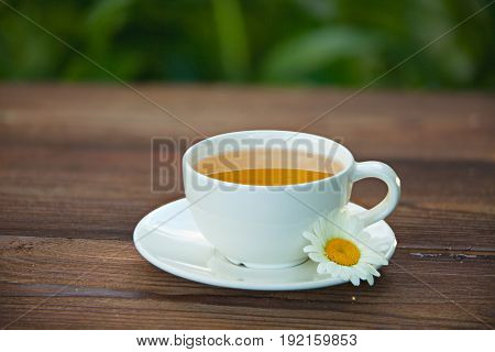 Porcelainl Cup With Green Tea On Table