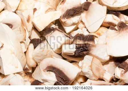 Healthy eating vegetable fungus - edible mushroom