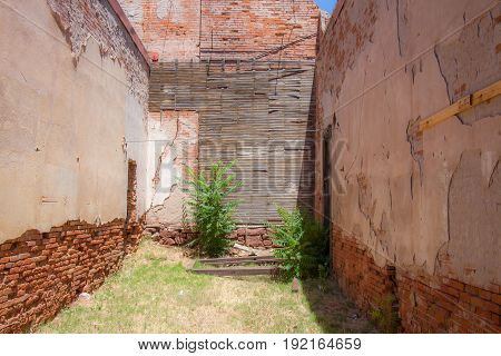 Weathered Old Abandoned Courtyard with scrub grass