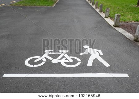 Cycle and pedestrian road markings on footpath or sidewalk in Auckland New Zealand NZ