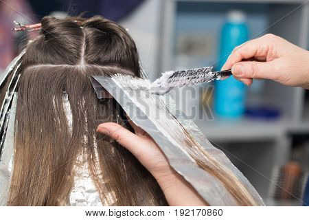 hair coloring in a beauty salon, hair color . A photo
