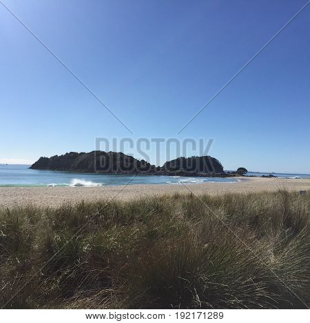 beach scene, sand dune, blue sky and bushland
