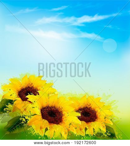 Nature background with yellow sunflowers and blur sky. Vector
