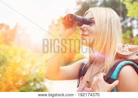 Young female hiker using binoculars in forest