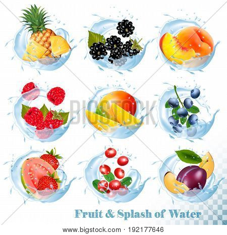 Big collection of fruit in a water splash icons. Pineapple mangopeach guava blueberry plums strawberry granberry raspberry blackberry. Vector Set