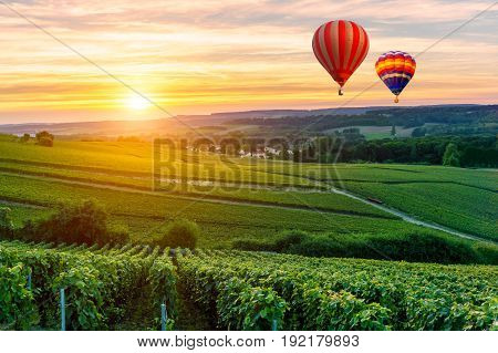 Colorful hot air balloons flying over champagne Vineyards at sunset montagne de Reims France