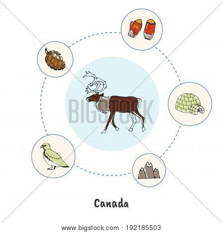 Attractive Canada. Reindeer horned male colorized doodle surrounded igloo, mountains, mittens, cone, rock ptarmigan hand drawn vector icons. Canadian nature symbols. Travel in North America concept