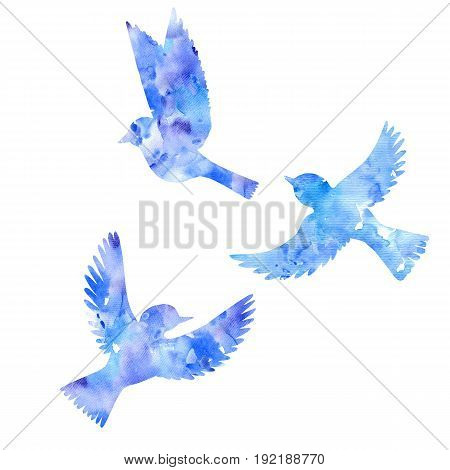 blue watercolor flying birds silhouettes, hand drawn songbirds, isolated painting elements