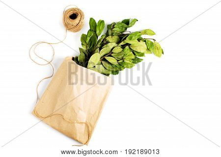 Branches Of Laurel Bay Leaves In Paper