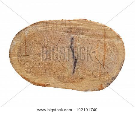 Annual rings on the cut pine. Logs saw. Sawmill. Cut pine. Logging. isolated on white background