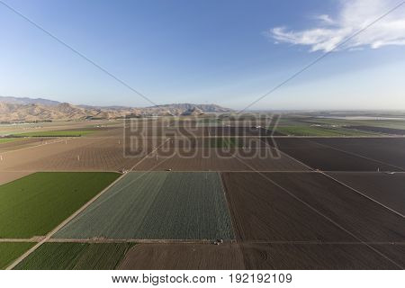 Aerial view of coastal farm fields near Camarillo in Ventura County, California.