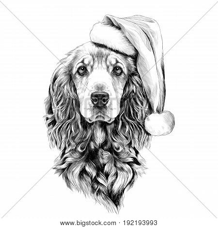 dog breed Cocker Spaniel face in a Santa hat sketch vector graphics black and white drawing