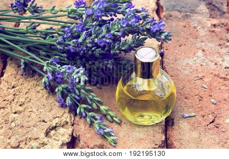 Essential lavender oil with fresh flowers on bricks background .Vintage look