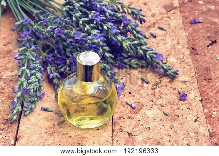 Lavender essential oil in a small bottle retro vintage style
